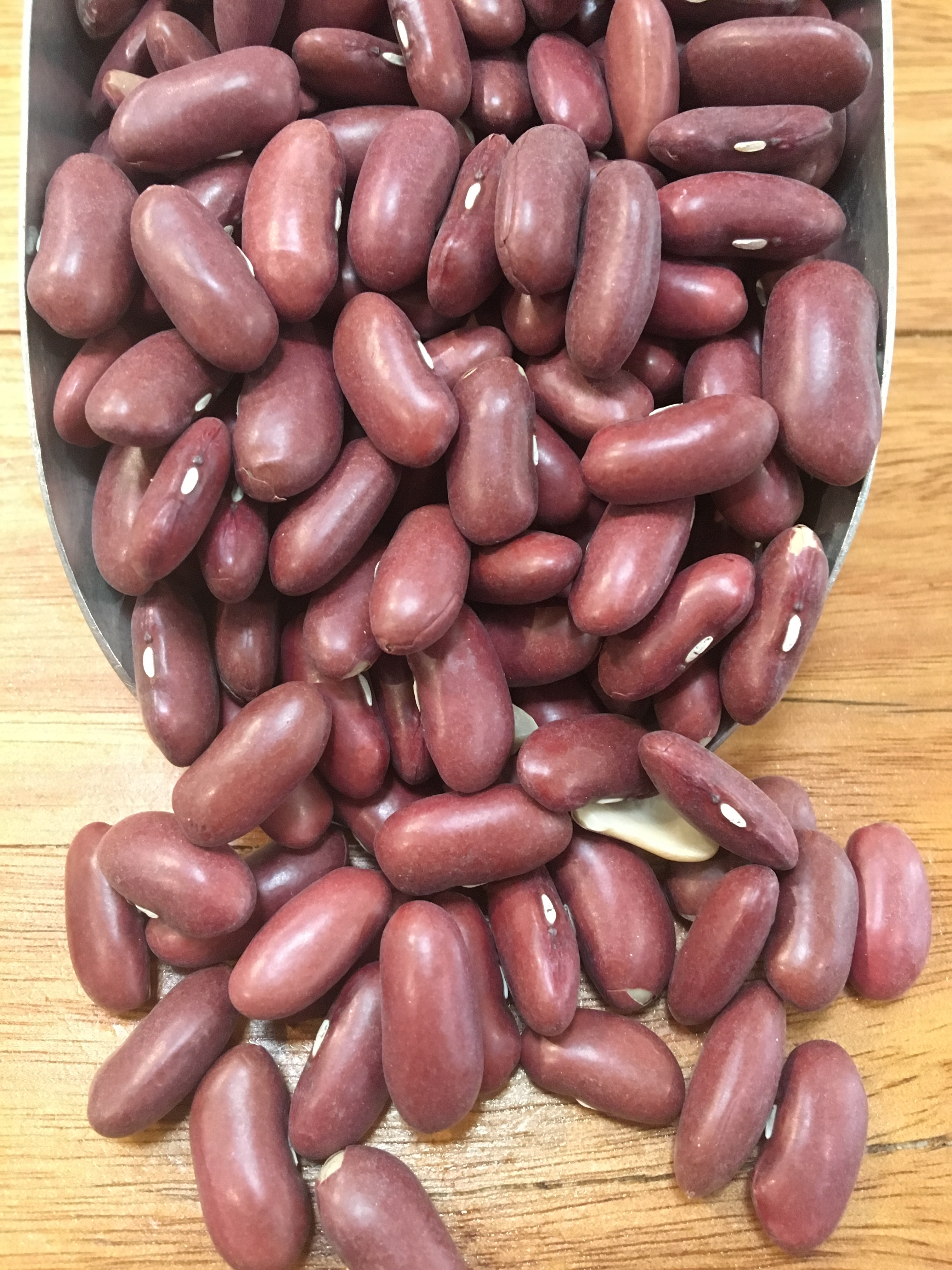 Kidney Beans Red Conventional 100gms Rustic Pantry Wholefoods